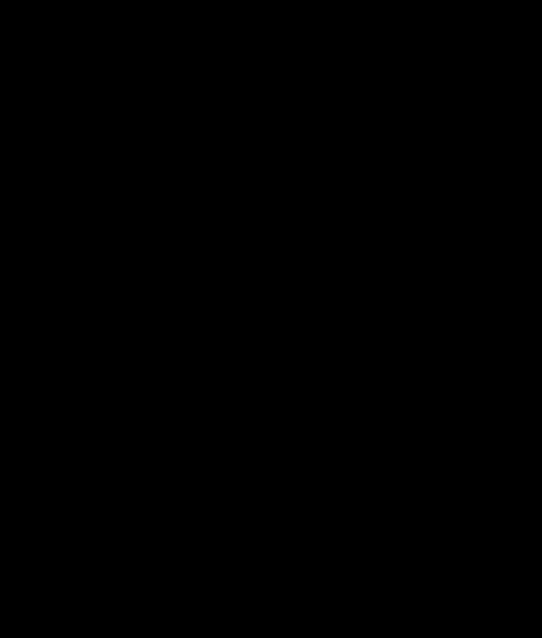 Icone Twitter noir et blanc